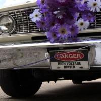 OMG_Wedding Car 2